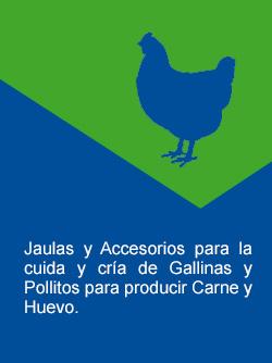 Jaulas para gallinas y pollitos