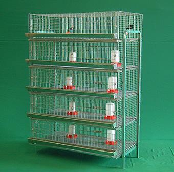Bateria-Iniciacion-para-pollas-5-niveles-de-1.16m