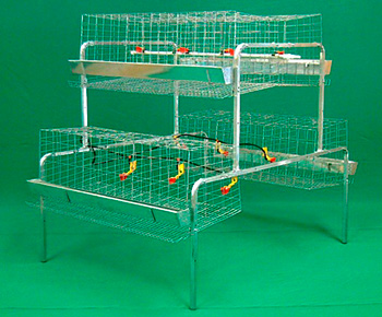 bateria-para-gallinas-1.2m-en-piramide