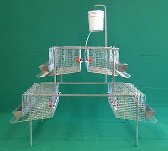 bateria-para-gallinas-en-piramide-de-1.5m-2niveles-3secciones