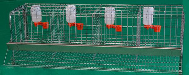 jaula-para-gallina-de-1.6m-de-3-4-o-5-secciones